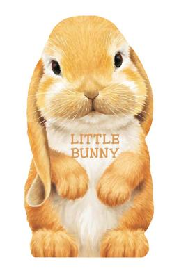 Bunny By Rigo, L. (ILT)